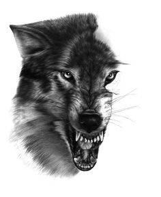 I'm submitting this picture as it is since i'm not going to finish it anyways It probably in this state for 10 months now or even longer. It was posted on Imageshack before since i threat account o. Wolf Tattoos For Women, Tattoos For Guys, Wolf Tattoo Design, Tattoo Designs, Hand Tattoos, Sleeve Tattoos, Scary Wolf, Werewolf Tattoo, Wild Wolf