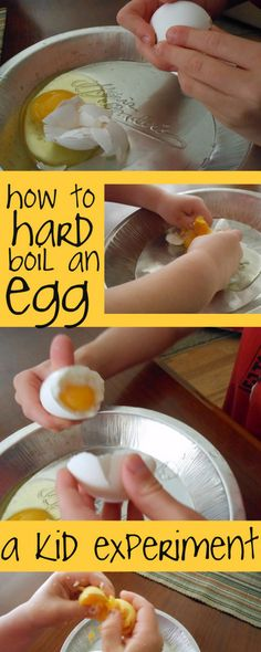 boiling eggs experiment (5) Good exercise in the scientific method, too.