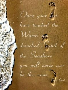 Once your feet have touched the warm sun drenched sand of the seashore you will never be the same