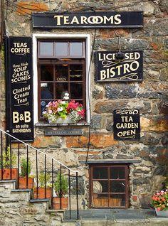 """High Quality Stock Photos of """"tea rooms"""" Uk Photos, Stock Photos, Scones And Clotted Cream, Premium Tea, Cream Tea, Snowdonia, Tea Strainer, Tea Time, Tea Pots"""