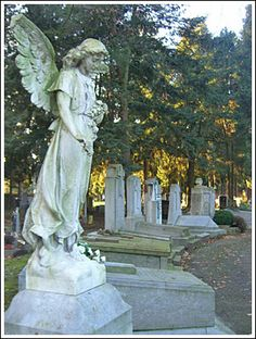 cemetery angels - Google Search