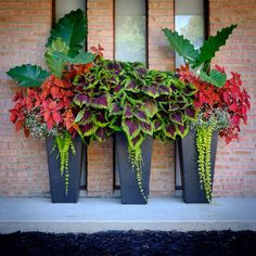 Front Porch Flower Planter (Front Porch Flower Planter) design ideas and photos - Front Porch Flower Planter Ideas 27 (Front Porch Flower Planter Ideas design ideas and photos - Front Porch Flowers, Planters For Front Porch, Tall Planters, Outdoor Flower Planters, Hanging Flower Pots, Patio Planters, Front Porches, Hanging Baskets, Modern Front Yard