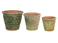 Jayson Home and Garden Dragonscale planters