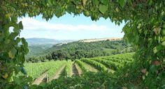Green heart of Italy - Umbria