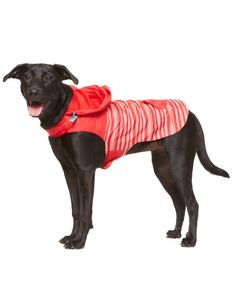 Who's afraid of a little water? Take your dog outdoors in any weather with this lightweight and trendy waterproof jacket. Store small treats in the convenient back pocket, and keep her nice and dry with an adorable attached hood.