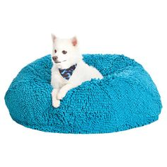 Portia Pet Bed in Bay Blue at Joss and Main