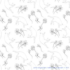 cat and flower pattern
