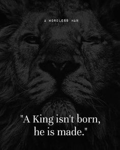 this is motivation. Lion Quotes, Me Quotes, Motivational Quotes, Inspirational Quotes, Quotes With Lions, Payback Quotes, Rules Quotes, Strong Quotes, Positive Quotes