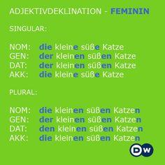 German Feminine Adjective Conjugation
