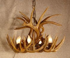 Deer Antler Sheds: Learn How to Make an Antler Chandelier on… Deer Antler Chandelier, Antler Lights, Chandeliers, Antler Wreath, Deer Antler Crafts, Antler Art, Deer Decor, Rustic Decor, Pallets