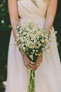wild daisies bouquet