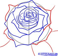 How To Draw Realistic Flowers | How to Draw a Realistic Rose, Draw Real Rose, Step by Step, Flowers ...