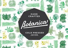 I love the mix of old-fashioned illustrations and modern color palette and type.   Botanica identity. Designed by Ascender.