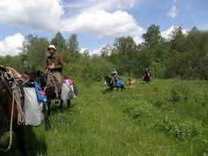Конные туры  horseback riding tours