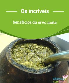 Os incríveis benefícios da erva mate  Beber a infusão da erva mate faz parte da tradição gastronômica de várias sociedades das regiões sul, desde tempos antigos.