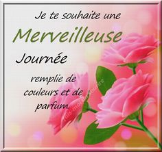 Je te souhaite une merveilleuse journée remplie de couleurs... Good Day Quotes, Good Morning Quotes, Good Day Wishes, Happy Friendship Day, Bon Weekend, Sweet Memories, Say Hello, Happy Day, Good Night