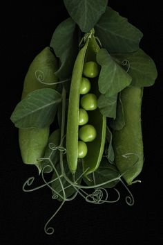 Peas in a Pod by ginacoxphotography - Verdura Vegetables Photography, Fruit Photography, Still Life Photography, Fruit And Veg, Fruits And Vegetables, Growing Vegetables, Food Pictures, Food Styling, Food Art
