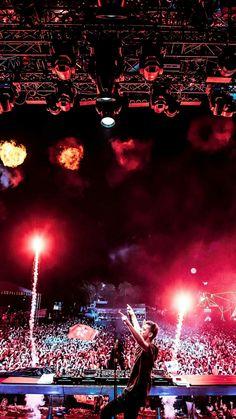 Martín Garrix 😘😍 Dj Techno, Techno House, Lollapalooza, Tomorrowland Festival, Festival Photography, Edm Festival, Best Dj, Avicii, Light Of Life