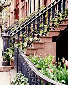 Love these staircase rails!