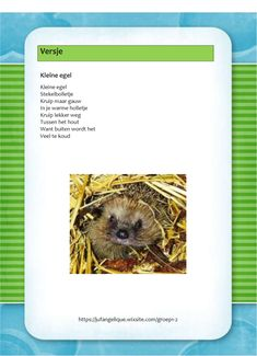 Versje: Kleine egel Drama, Yoga, Autumn, School, Kids, Spinning, Fall, Toddlers, Boys