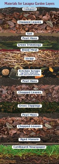 1000 images about compost soil recycle on pinterest compost diy compost bin and mulches - Lasagna gardening in containers ...
