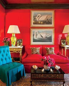 Audubon art, red room