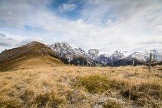 Herbstliches Gepränge am Mot Tavrü - In der Natur unterwegs Mountains, Nature, Travel, Communities Unit, National Forest, Alps, Hiking, Naturaleza, Trips