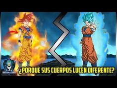 ¿COMO ES QUE CAMBIA EL CUERPO DE UN GUERRERO AL VOLVERSE UN DIOS?   DRAGON BALL SUPER   MEXISAIYAN - YouTube