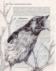 Anthropometry by Paula Swisher
