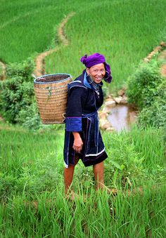 Hmong woman working in the rice fields just outside of Sapa, Vietnam.