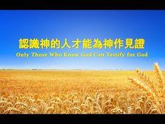 【東方閃電】全能神的發表 《認識神的人才能為神作見證》