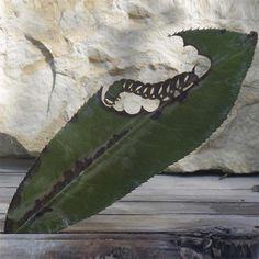 Real leaf, cut away art