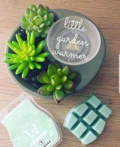 Scented Wax Warmer, Wax Warmers, Scentsy, Vip, Business, Garden, House, Ideas, Garten