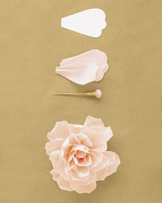 Use 35 petals (get the template below) and a button stamen. Shape petals to cup inward slightly. Pleat base of each petal; pinch folds in place. Attach to stamen, positioning innermost petals low, with midpoints at stamen's head; raise each subsequent ring of petals slightly. Curl tips of petals inward.Get the Peony Petal Template