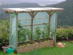 die besten 25 tomatenhaus selber bauen ideen auf pinterest Garten Überdachung Selber Bauen