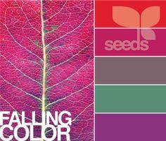 palette idea for purple basement Color Walls, Wall Colors, House Colors, Paint Colors, Colours, Office Color Schemes, Colour Schemes, Color Combos, Deco Paint