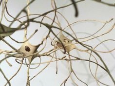 Sculpted paper over wire neurons
