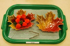 Transferring with tongs. Fall Pom poms into leaf dishes. Montessori Preschool, Montessori Education, Fall Preschool, Montessori Materials, Thanksgiving Activities, Autumn Activities, Fall Crafts For Toddlers, Montessori Practical Life, Kindergarten Themes