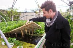 Incredible rooftop farm takes over Israels oldest mall to grow thousands of organic vegetables