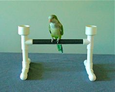 Wrap PVC in vet wrap for grip and comfort!  PVC Bird Perch Table Stand Play Gym