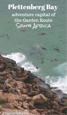 Ultimate adventure guide to Plettenberg Bay, South Africa; diving, canyoning, hiking etc. Scuba Diving Certification, Adventure Activities, Hiking Tips, Africa Travel, Travel Guides, Adventure Travel, Videos, South Africa, Things To Do