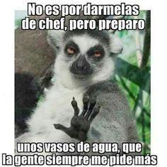 Master Chef  #gracioso #humor