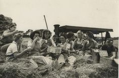 The Land Girls of Cornwall