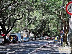 passeio de bike em Salvador. corredor da vitória.