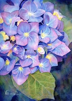 Pink And Blue Art Print by Victoria Lisi. All prints are professionally printed, packaged, and shipped within 3 - 4 business days. Choose from multiple sizes and hundreds of frame and mat options. Botanical Art, Botanical Illustration, Watercolor Flowers, Watercolor Paintings, Watercolours, Hydrangea Painting, Arte Floral, Blue Art, Beautiful Paintings