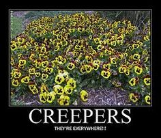 Evil creepers!