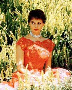 Sophia Loren c. 1950's