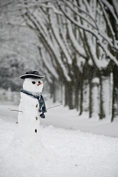 Man of Snow by Pete Taylor on Flickr.