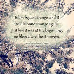Prophet Muhammad ....