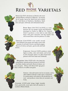 Red Rhône Wine Varietals by Rhône Rangers Wine Facts, Wine Varietals, Wine Folly, Chateauneuf Du Pape, Wine Searcher, Wine Sale, Homemade Wine, Wine Guide, Types Of Wine